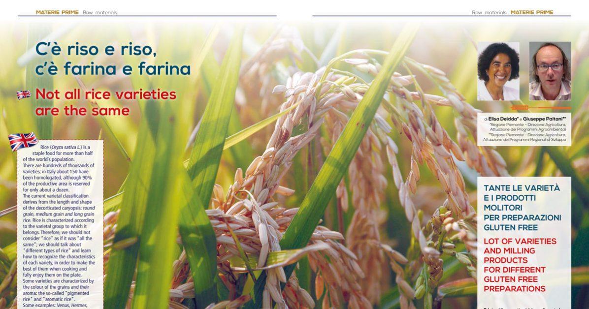 Le varietà e i metodi di macinazione del riso